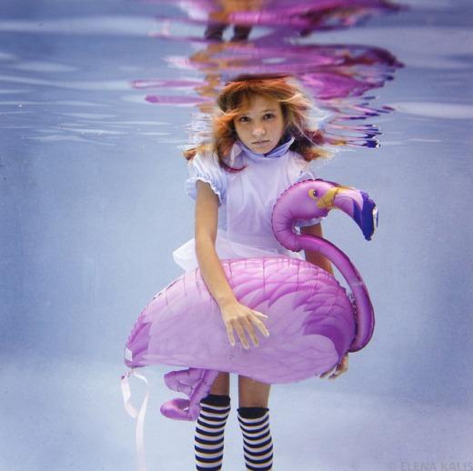 Portfolio - Underwater Photography